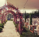 Park Lamore Wedding