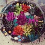 Serçev Çiçekçisi